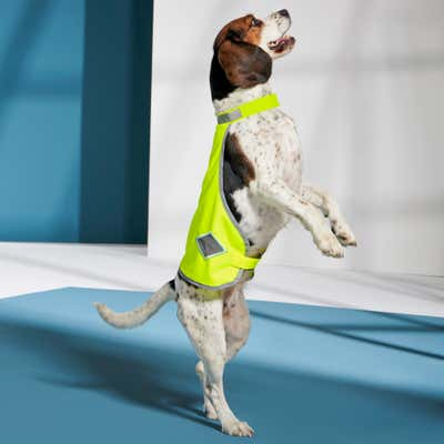 Hundemantel mit Reflektoren